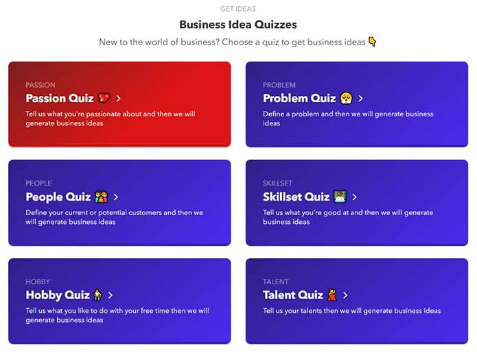 nichesss business idea quizzes