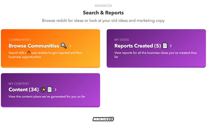 nichesss search and reports